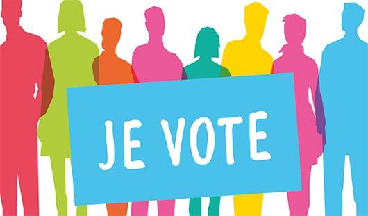 elections-departementales-.jpg