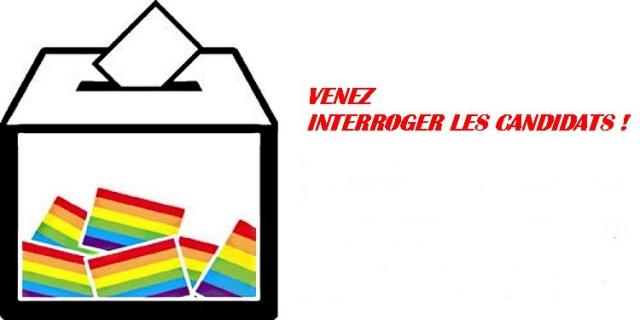 Elections LGBT.jpg