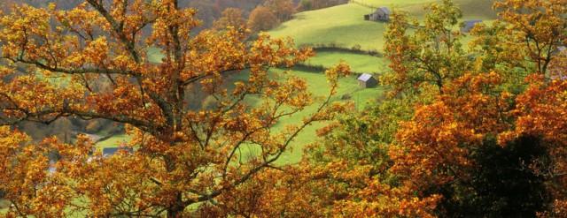 novembre pays basque.jpg