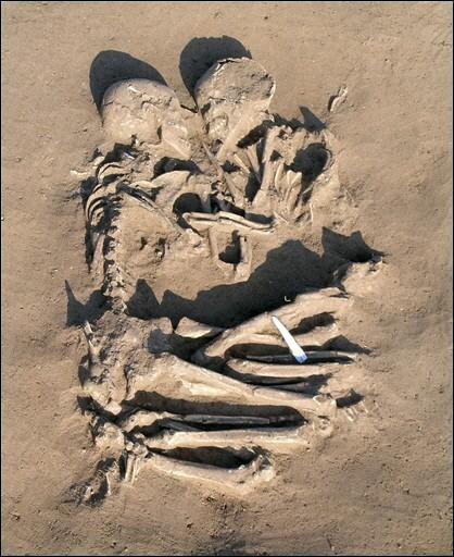squelettes-enlaces.jpg